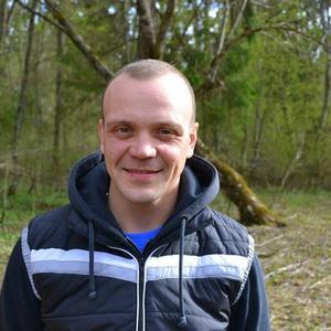 Василий, 39 лет, Красное Село