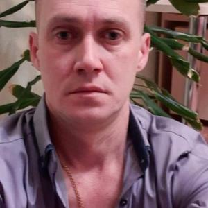 Сергей, 36 лет, Череповец