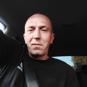 Илья, 39 лет, Саранск