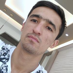 Шахбоз, 25 лет, Сургут