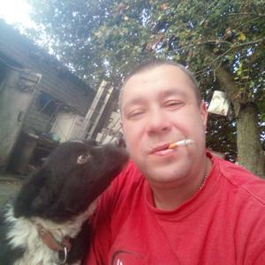 Станислав, 39 лет, Белгород