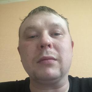 Артем, 35 лет, Архангельск