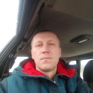 Сергей, 41 год, Губкин