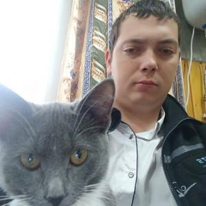 Руслан, 31 год, Александров