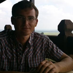 Александр Пупышев, 36 лет, Елабуга