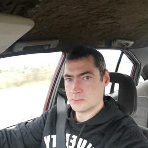 Андрей Иванович, 39 лет, Зеленоградск