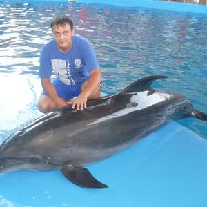 Евгений, 34 года, Чита