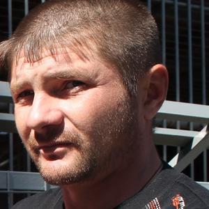 Андрей, 35 лет, Тюмень
