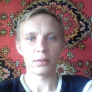 Денис, 41 год, Ярцево