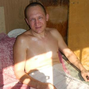 Игорь, 47 лет, Краснокаменск