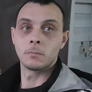 Роди Лютый, 34 года, Черногорск