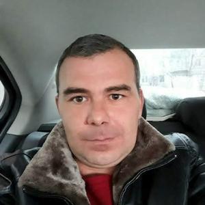 Шурик, 42 года, Ахтубинск