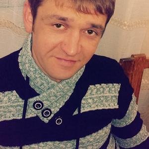 Денис, 40 лет, Ярославль