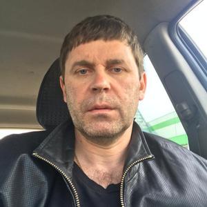 Алексей, 43 года, Пушкино