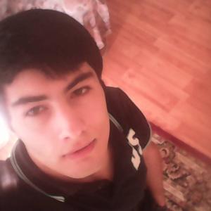 Мурад, 22 года, Дербент