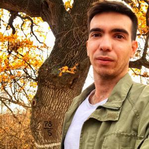 Денис, 28 лет, Геленджик