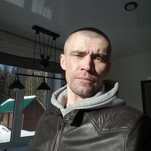 Вадим, 43 года, Кондопога