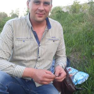 Сергей, 41 год, Щекино