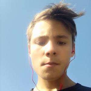 Алексей, 18 лет, Новосибирск
