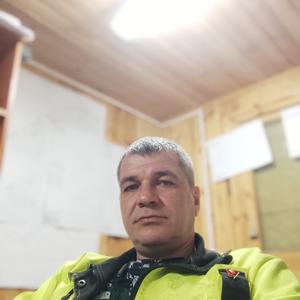 Александр, 43 года, Ногинск