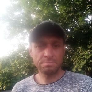 Роман Койда, 36 лет, Москва