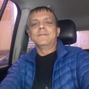 Александр, 44 года, Елабуга