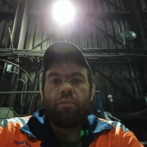 Сергей Лисица, 33 года, Норильск