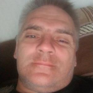 Алексей Соколов, 42 года, Санкт-Петербург