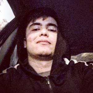 Amir, 22 года, Красногорск