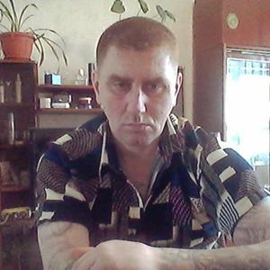 Дмитрий Мальцев, 41 год, Киселевск