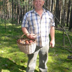 Анатолий, 70 лет, Новосибирск