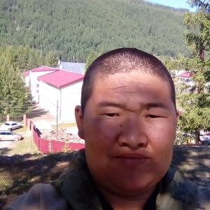 Владимир, 33 года, Улан-Удэ