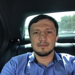 Agay Mirzabekov, 42 года, Сергокала