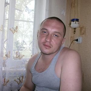Николай, 39 лет, Богородицк