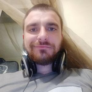 Анатолий Рогозин, 29 лет, Павловский Посад