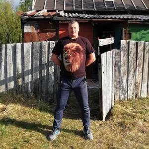 Дмитрий, 42 года, Кировск