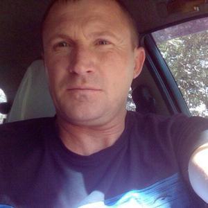 Борис, 42 года, Чебоксары
