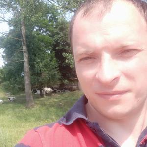Дмитрий, 33 года, Правдинск