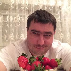 Дан, 37 лет, Моздок