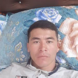 Ромажан, 29 лет, Пушкино