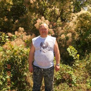 Александр, 53 года, Апатиты