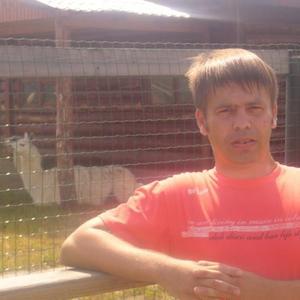 денис, 42 года, Вологда