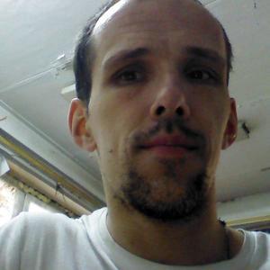 Александр, 42 года, Лакинск