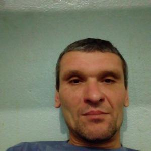 Сергей Шахов, 45 лет, Топки