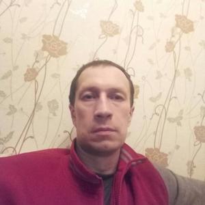 Дима Д, 40 лет, Великий Устюг