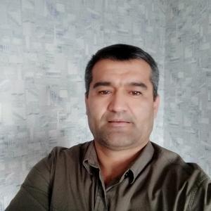 Руслан, 43 года, Кашира
