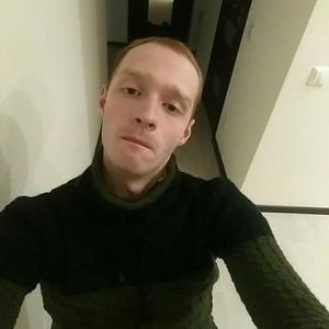 Сергей, 26 лет, Кингисепп