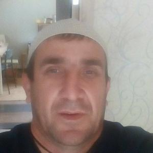 Тимур, 42 года, Белебей