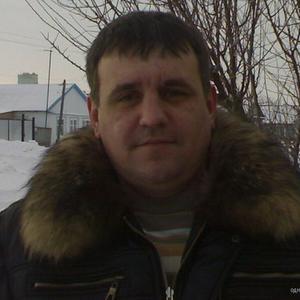 Владимир Романов, 44 года, Новоузенск