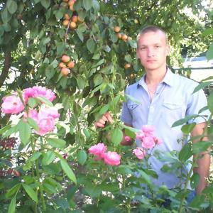 Сергей, 32 года, Льгов